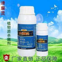 杏树流胶病的防止与综合管理