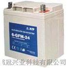 大连市光宇蓄电池6-GFM-17 12V17AH