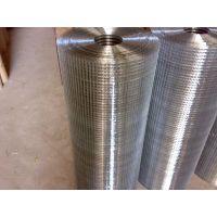 长期供应广州不锈钢电焊网|养殖电焊网|抹墙电焊网