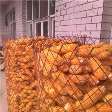 安平钢板网厂家低价热销圈玉米钢板网 菱形孔玉米网