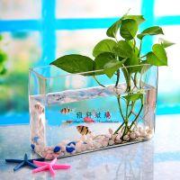小额批发 透明大号吹制玻璃花瓶方缸 大号玻璃鱼缸水族箱 特价