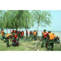厂家直销便携式 气压植桩机防汛打桩机 专业防汛防洪设备厂家