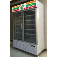 双门饮料展示柜 超市立式冷冻冰箱 啤酒冷藏陈列柜 制冷设备批发