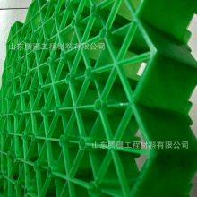 山东腾疆生产植草格,停车场专用隐形植草格种植箱 绿色环保耐用抗压