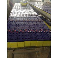 供应厂家直销儿童电动车电池 支持混批三轮电动车电池 免维护蓄电池