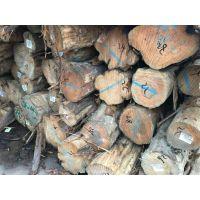 深圳木材进口海关编码归类|查询报关代理