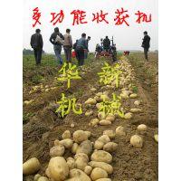 省时省力高效率土豆收获机 华新手扶花生收获机