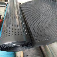润泽塑料排水板 绿化排水板 蓄排水板厂家批发