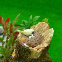 【小鸟巢鸟窝】多肉植物微景观布景摆件 迷你动物模型设计diy素材