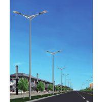 河南道路工程灯品牌 景观灯批发 许昌路灯灯具批发GY-004科技指向农村