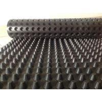 排水板厂家、排水板(图)、优质排水板厂家