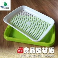 豆苗芽苗盘小麦草种植盘 发豆芽盘育苗盘芽苗菜种植套装 一米菜盟