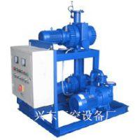 兴东供应JZJ2B罗茨水环真空机组 罗茨真空泵价格