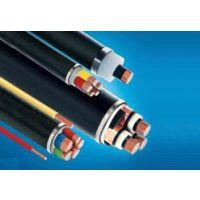 中南电线 BVR2.5平方 国标家装插座软电线 多股铜芯软线 100米/卷 爱上中南爱上家