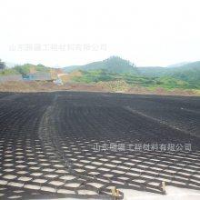 山东腾疆三维网状格室 土工格室生产厂家 高强度HDPE地基土工格室可打孔