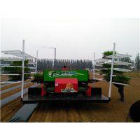 移栽机2ZBY-2A型2行自动化秧苗移栽机|性能稳定信誉好|田耐尔