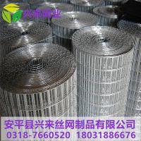 改拔丝电焊网 3x3电焊网价格 抹灰钢丝网