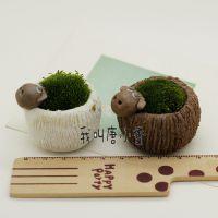 pz35景德镇创意微景观桌面盆栽时尚花器陶瓷迷你可爱手工小摆件