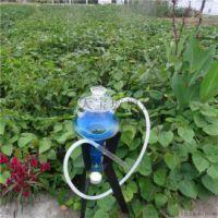天宝乐TB195阿拉伯水烟壶,玻璃工艺品,玻璃水烟壶生产厂家批发