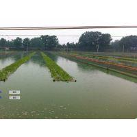卓振智能智慧农业领先厂家,物联网+水产养殖无线监控系统