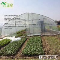 供应罗定蔬菜大棚FC-013、蔬菜大棚厂家、芳诚温室--18988967562