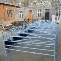 梧州全套养猪设备饲料机定位栏生产厂家