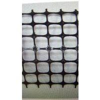 供应土工格栅网 矿用双抗网钢塑网厂家