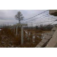 白山边境刺钢丝网,边境刺钢丝网厂家(图),边境刺钢丝网供货商