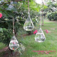yipan悬挂式水滴花瓶 透明玻璃花瓶 家居装饰工艺挂件