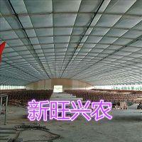 新旺兴农种植大棚8204热镀锌钢架大棚