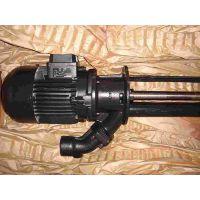 BRINKMANN水泵TH1113A500+001 BP1-24003113-003