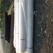 鹅苗养殖网 矿用塑料网 养殖塑料网