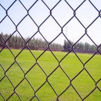 专业生产浸塑体育场围网,体育护栏网
