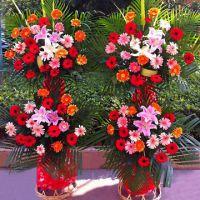 防城港市鲜花批发防城港市花卉15296564995防城港鲜切花 销售插花各类鲜花