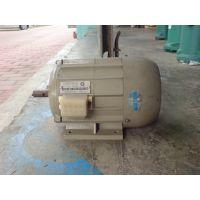 誉龙微型电动机YY71-2单相电容驱动机