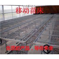 晋城厂家直销1.7米大棚苗床网 安装育苗床 热镀锌网片