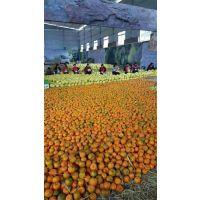 平昌水果保鲜冷库 水果保鲜冷库造价 水果保鲜冷库安装 手机远程控制冷库