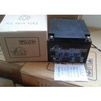 通化理士蓄电池DJW12-33(12V33AH)工业电源专用蓄电池