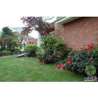 一禾园林(图),庭院景观设计施工,台州庭院景观设计