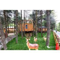 森林木屋树屋设计,森林木屋树屋施工,融嘉供