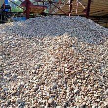 广东鹅卵石批发 英德石 大量英石批发小河石厂家 鹅卵石采购