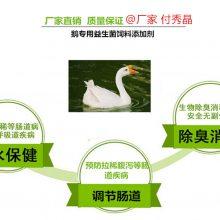 养鹅益生菌什么成分主要