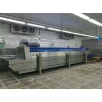 厂家直销单双螺旋速冻机小龙虾水饺包子速冻设备备薯条薯片速冻机