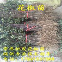 http://himg.china.cn/1/4_1007_236276_200_200.jpg