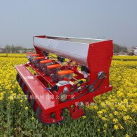 多功能香菜播种机 拖拉机带娃娃菜精播机 8行藜麦播种机厂家