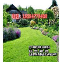http://himg.china.cn/1/4_1009_1026421_630_700.jpg