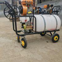 安吉县果园用自走式喷药器 启航玉米地除草打药机 风送式喷药车哪里有卖