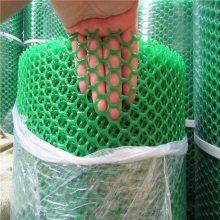 全新料塑料网 鸡舍育雏网 绿色白色胶网