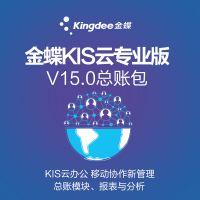 金蝶KIS云专业版V15.0总账包 含实施