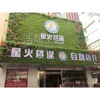供应人造植物墙 室外装饰墙体 仿真植物草皮墙